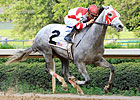 Joyful Victory Stamps Oaks Ticket in Fantasy
