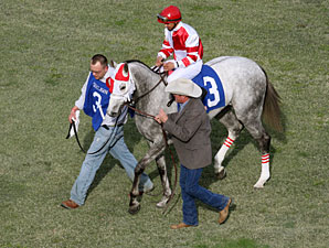 Joyful Victory wins the 2011 Honeybee.