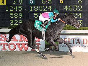 Jslookovrurshoulda wins the 2015 LA Bred Premier Night Ragin Cajun Starter Stakes.