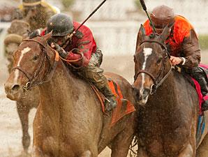 Juniper Pass wins the 2011 San Luis Rey Stakes.