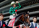 Poll: Just a Way Top Ranked Horse in World