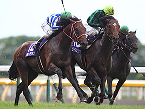 Just a Way Prevails in Tokyo's Yasuda Kinen