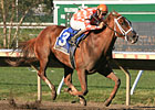 In Final Start, Just Jenda Tops Malibu Prayer