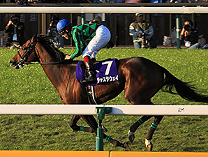 Just a Way Devastates Tenno Sho Field