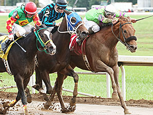 Justalittlesmoke wins the 2014 John W. Galbreath Stakes.