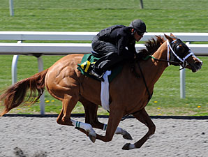 Horses to Watch in Keeneland's Session 2