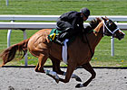 Horses to Watch in Keeneland&#39;s Session 2