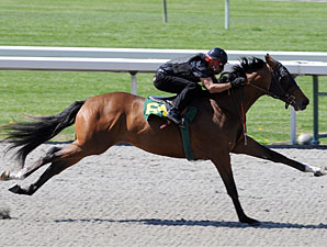 Horses to Watch in Keeneland's Session 1
