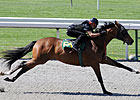 Horses to Watch in Keeneland&#39;s Session 1