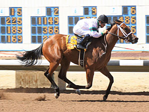 K B 's Princess wins the 2012 C.O. Ken Kendrick Memorial S.