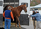 Iqbaal Tops 11th Session of Keeneland Auction