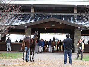 Numbers Down at Penultimate Keeneland Session