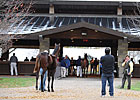 Street Sense Colt Tops Keeneland Session