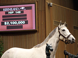 GI Winner Zazu Fetches $2.1M at Keeneland