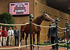 Keeneland Sale Opens With $4.2 Million Topper
