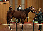 $450,000 General Election Tops at Keeneland
