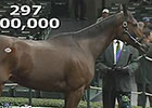 Kee Nov Sale 2014 - Hip 297, Fiftyshadesofhay