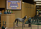 Horton Acquires War Front Filly for $2M