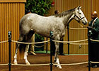 Keeneland Day 3: $1.15M Tapit, More Gains