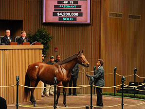 Prices Sizzle as Keeneland Nov. Sale Opens