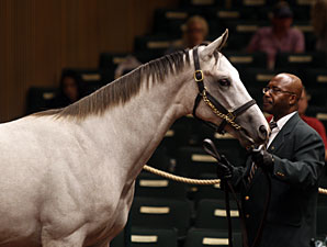 Tapit Colt Tops Second Session at $700,000