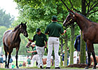 State-Breds Entice Keeneland Yearling Buyers
