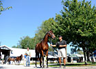 Sellers&#39; Profits Up at Keeneland Sept. Sale