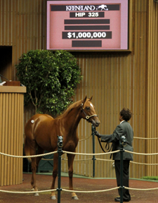 Tapit Colt Tops Seven Figures at Keeneland