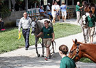 Big Gains Mark Keeneland Sale's Day 11
