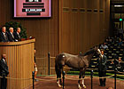 Unbridled&#39;s Song Filly Brings $1 Million