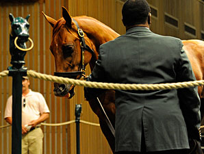 Keeneland Sept. Catalog Has 3,604 Yearlings