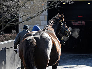 Keeneland Numbers Decline Once Again
