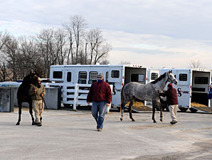 Keeneland January Sale Faces Tough Times