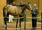 Half-sister to Gio Ponti Brings $950,000