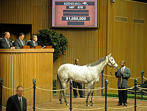 Stronach Spends $1.085 Million on Broodmare