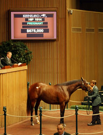 Keeneland Day Four Gets Underway