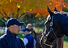 Keeneland Market Rises Dramatically