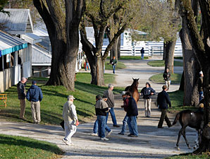 Keeneland Sale Ends on Encouraging Note