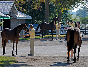 Keeneland's Session 10: Fillies Rule
