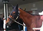 Kentucky Oaks 2013: Beholder Schooling