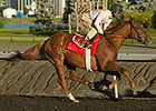Kaigun, Grand Arch Clash in Woodbine Mile