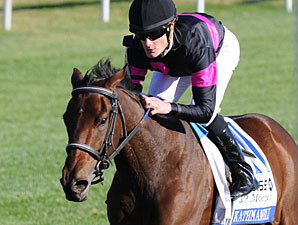 Aide Hopes to Add Golden Rod Win