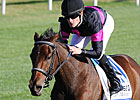 Grade II Winner Kathmanblu Retired