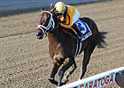 Kauai Katie Puts Streak on Line in Matron