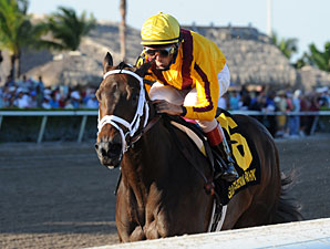 Kauai Katie Primed for Start in Vagrancy