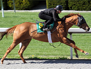 Pulpit Colt Excels During Keeneland Sale Work