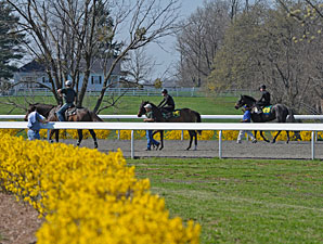 Keeneland April Sale: Poised for a Rebound?