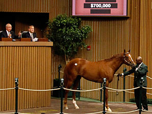 Majestic Warrior Colt Tops at Keeneland