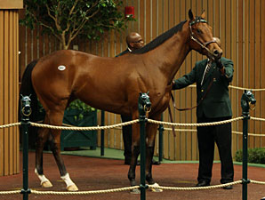 Unbridled's Song Filly Brings $700,000