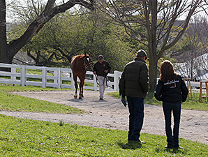 Average, Median Up Double Digits at Keeneland